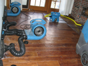 commercial water damage, commercial water damage Rice MN, flood remediation Rice MN, flooded apartment cleanup Rice MN, flooded apartment cleanup, frozen pipe repair Rice MN, frozen pipe repair, frozen pipe water damage Rice MN, frozen pipe water damage, frozen pipes in house Rice MN, frozen pipes in house, frozen pipes water removal Rice MN, frozen pipes, water removal, water removal Rice MN, frozen water pipes Rice MN, frozen water pipes, frozen water pipes Rice MN, home water damage Rice MN, pipe freezing Rice MN, pipe freezing, Water Damage Company Rice MN, Water Damage Rice MN, Water Damage Repair Rice MN, Water Damage Restoration Rice MN, Water Damage Specialist Rice MN, Water Restoration Company Rice MN
